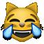 :joy_cat: