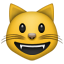 :smiley_cat: